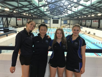 Gallery - Swimming Relay Teams