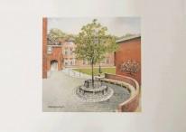 Polly Rafter Print: Kings Tree
