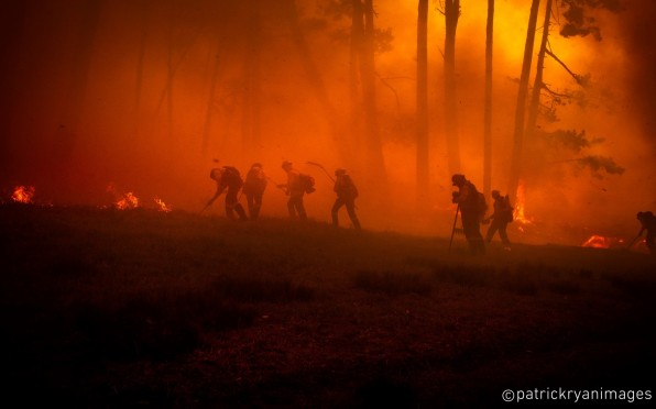 Volunteer Wildfire Services fighting the recent fires on Table Mountain (April 2021)