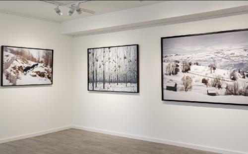 BVGS art gallery