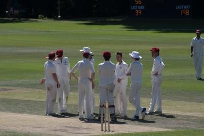 Gallery - Bradfield Waifs (Cricket)