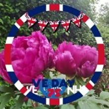 Fleur Levi