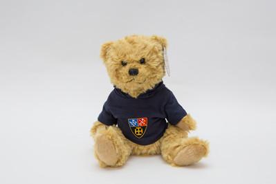 Merriman Bear with hoodie