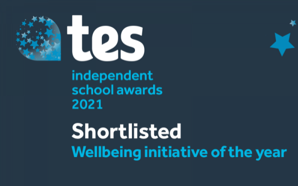 TES Independent School Award: Wellbeing Initiative of the Year