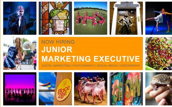 Image result for hiring Junior Marketing Executive