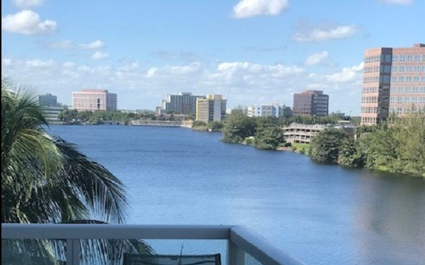 Robin's view in Miami