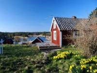 Nordic Region Online Alumni Network