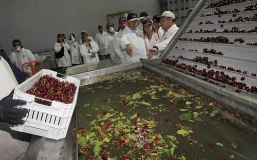 Visita empresa agroindustrial en Romera; Ministerio de Agricultura Chile CC BY-NC 2.0