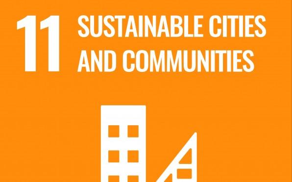 SDG 11