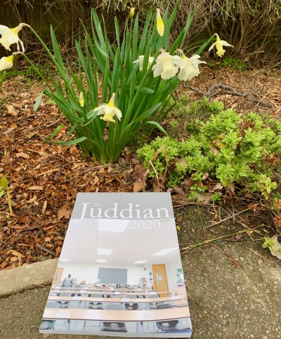 Gallery - Juddian Magazine 2020