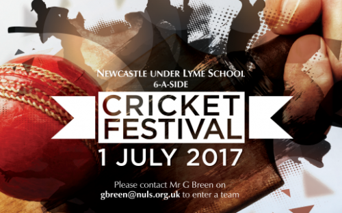 story image for Cricket Festival