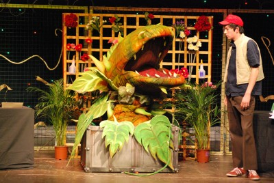Gallery - Little Shop of Horrors