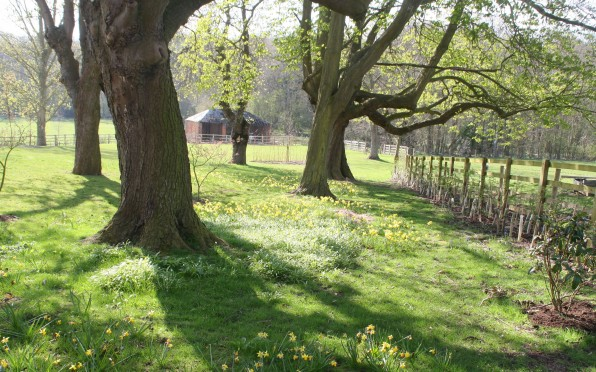 View across Princethorpe's grounds. Taken by Alex Darkes in 2010.