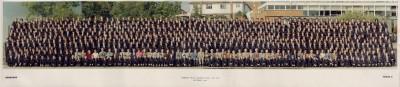 Gallery - Whole school photos