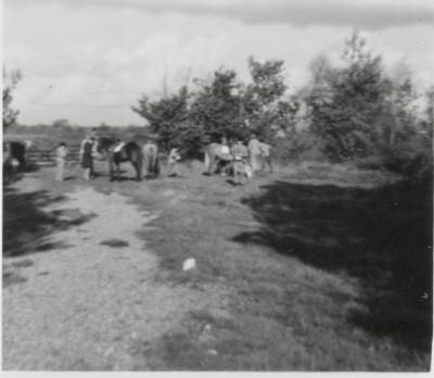 Image - Walhampton 1950s 1960s 1950s and 1960s