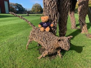 Wells Cathedral School Teddy Bear