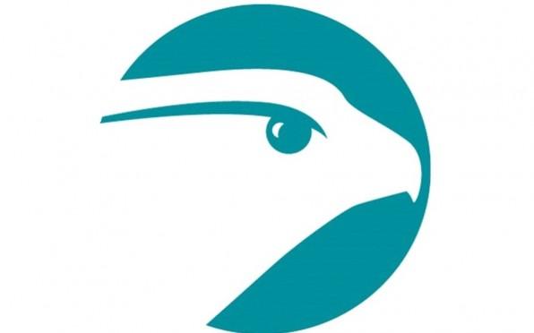 Falcon Property