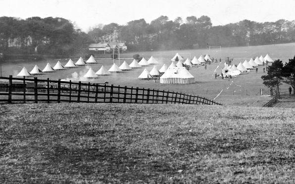 Campsite at Windlesham
