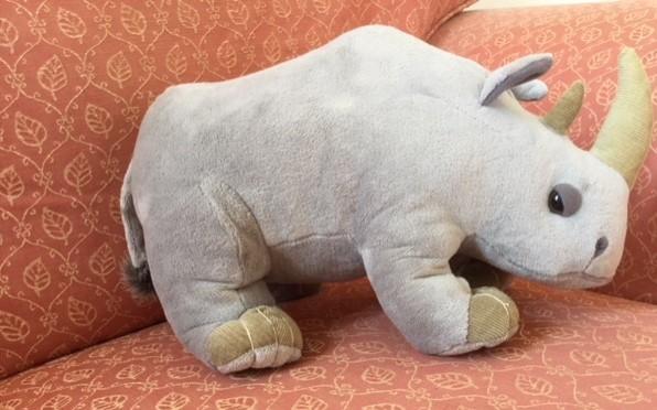 Raleigh Rhino