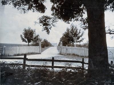 Gallery - Looking back
